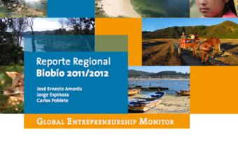 Portada-GEMBiobio-2011-2012