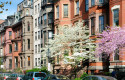 back-bay-brownstones